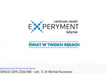 gdynia_experiment